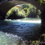 canoe_0613_002