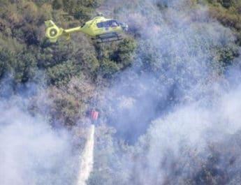L'incendio al Parco del Pineto